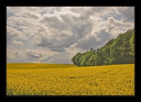 Colors for a better world by Hartmut-Lerch