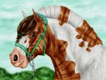 Trombi : NQ Spring 2015 Event by Golden-Horse-Stables