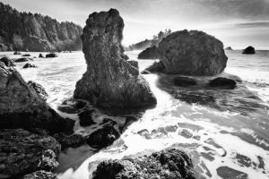 College Cove Sea Stacks by nathanspotts