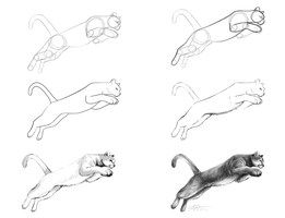 Mountain Lion Speedpaint Process by sapphiresky1410