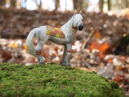 Autumnal Filly by Drenarrow