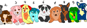So Many Puppies for adoption by Skylar-Wolf