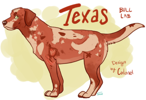 Texas by colonels-corner for me by AusieOtterPie