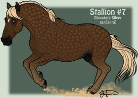 Mustang Stallion Adoption 7 by JNFerrigno