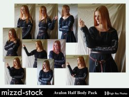 Avalon Half Body pack by mizzd-stock