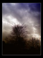 After the Storms by Misty2007