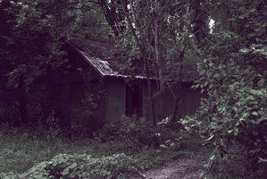 cabin in the woods by Vacantia