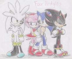 Four Hedgies by SonicSega1991