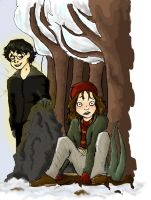 Harry and Ginny talk by MioneBookworm