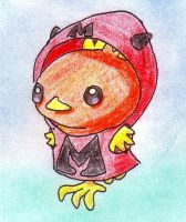 Team Magma Torchic by Winfi