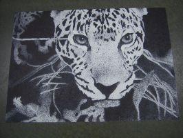 THE jaguar by AnnaMay15