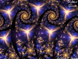 Shielded Spirals by one-tough-one