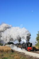 Chinese steam in Iowa. by laxhogger