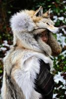 Red Arctic Wolf Headdress II by NaturePunk