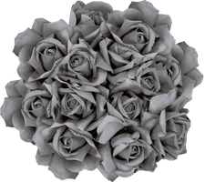 Halloween roses 2 PNG by oxygun