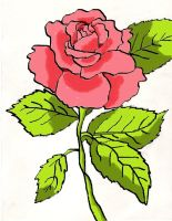 Rose- colored by Endeavor4ever