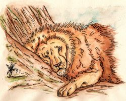 Mufasa- Cat Nap by TheColdSoul1888