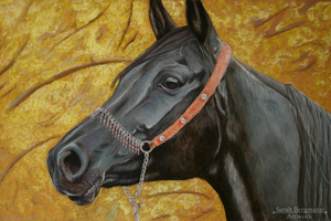 Black Arabian mare - Pastel by BLACKNIGHTINGALE81