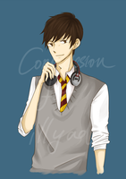 Commission: James Sirius Potter for illyad by Heurim