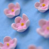 Itsy bitsy sugar flowers by Hopscotchbaby