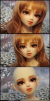 Face-up: Volks Kun - 1 by asainemuri