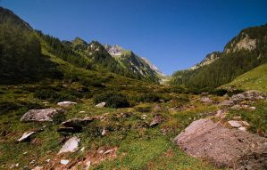 The Alps Landscapes 2 by mutrus