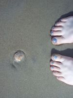 Feet and a shell by obLIZZIEous
