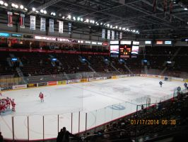 Wfcu Arena  Game Night by catsvsfox