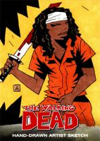 Michonne - The Walking Dead by soliton