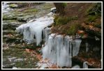 Spring Icicles by ambermac148