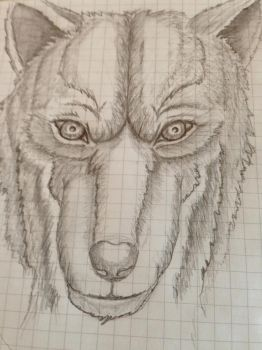 Wolf by Duuseri