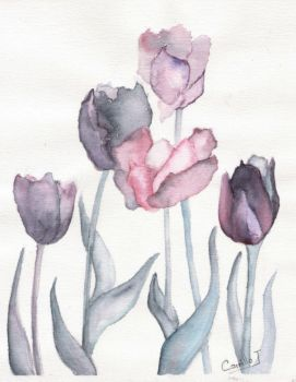 tulipanes by arcaos