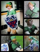 Link Cosplay Collage by EnviousHero