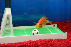 Soccer Fish by RoxMad