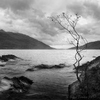 Loch Lomond by AgenttSmith