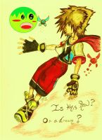 Sora and navi by Someone-that-is-me