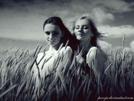 In the summer IV by poezja