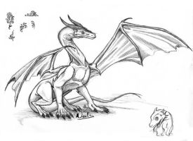 Dragon sketch and tribals by noot
