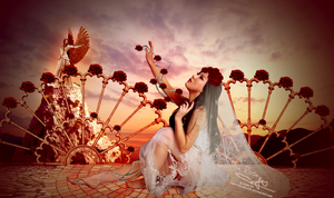 The Rose by HayleyGuinevere