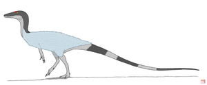 Coelophysis bauri by King-Edmarka