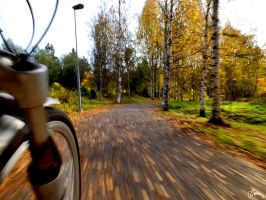Autumn from a Bicycle by Carnaga