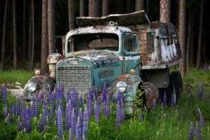 Old Dumptruck Stock 1 by leeorr-stock