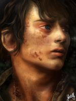 The Lord of the Rings: Frodo Baggins by Ysall