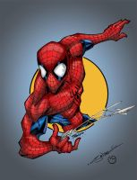 SpiderMan Circle Series by MarcBourcier