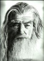 Gandalf Portrait by jiehng
