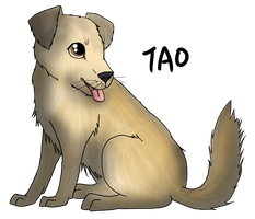 Point Commission: Tao by Animalible