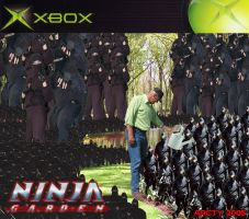 Ninja Garden only for XBox by Arcty