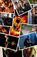 Free Hunger Games Background by XxStarryEyedMoonxX