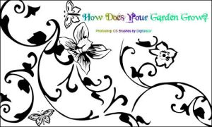 How Does Your Garden Grow? by digitalstar
