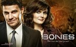 Bones and Booth Season 6-1 by artistamroashry